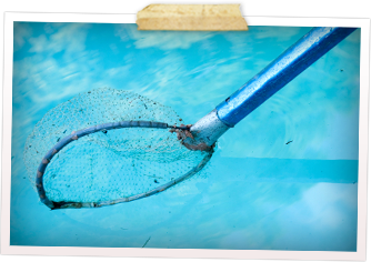 Weekly Pool Service Amp Cleaning In Tucson Az Blue Knight
